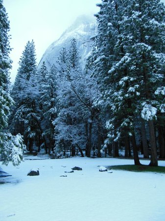 Upper Pines Campground: April Snow