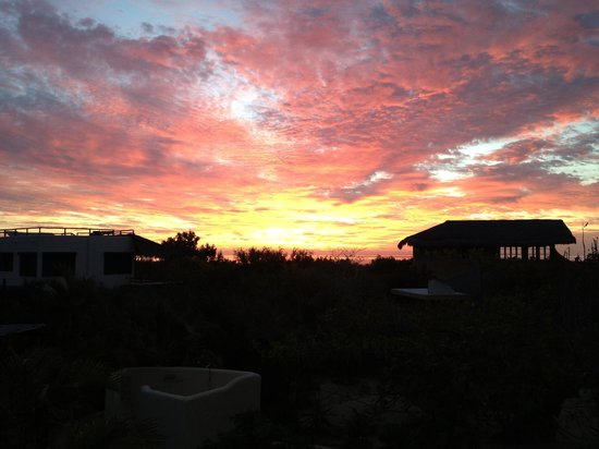 Reinhard's Rentals: Sunrise