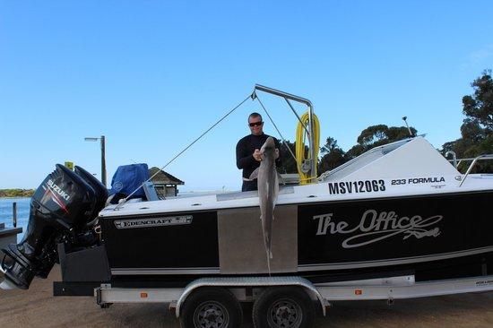 Mallacoota Fishing Charters &Tours: big fish