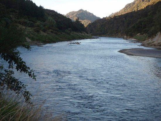 Whanganui River Canoes - Day Tours