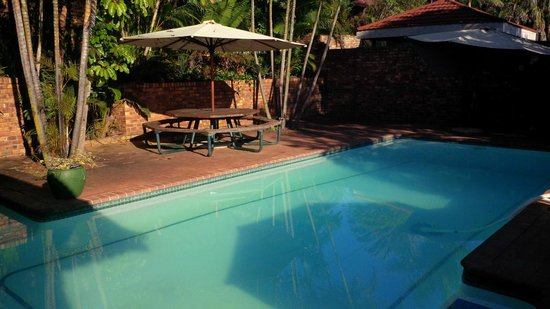 Emoyeni Lodge: Pool