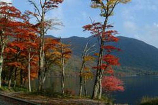 赤城森林公園