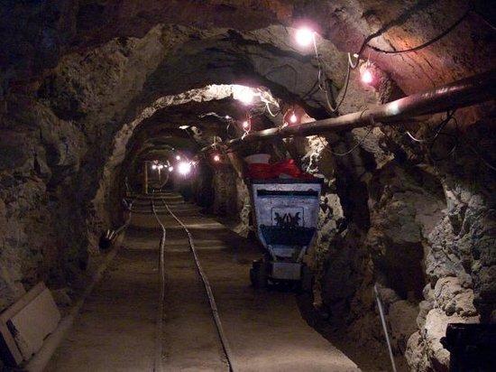 Foto de El Nopal Mine