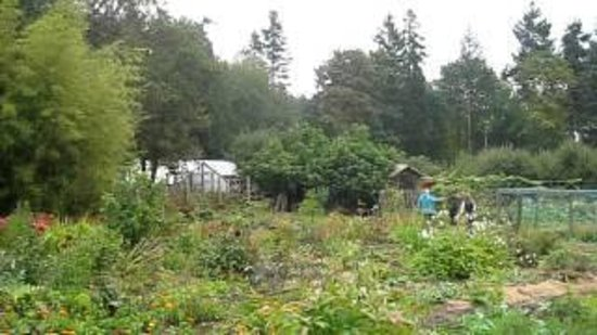 Wave Hill Farm