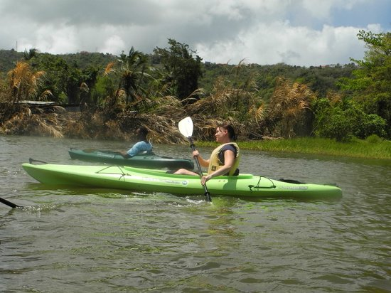 DFH Kayaking: We were able to paddle along at our own pace