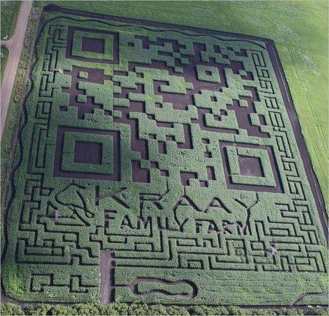 The Amazing Field Maze