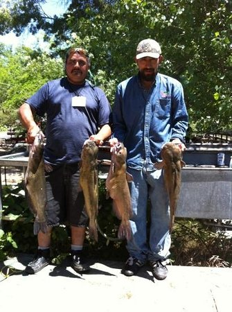 Shady Acres Campground : can you say catfish?!