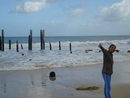 Aldinga Beach : hello friends...