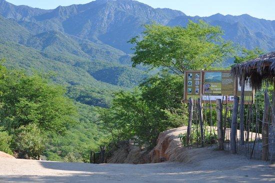 Sierra La Laguna Baja California Mexico Top Tips