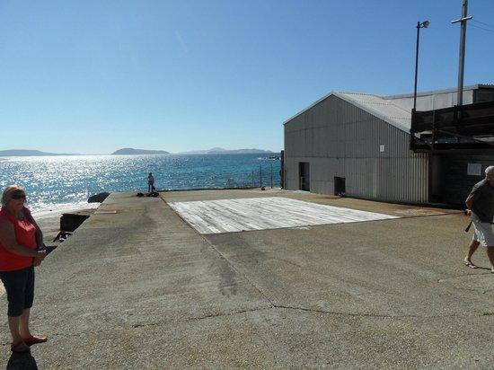 Albany's Historic Whaling Station: flensing ramp