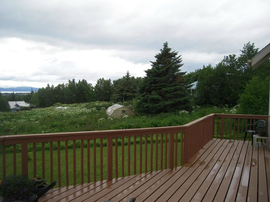 Pioneer Inn Homer: View from patio