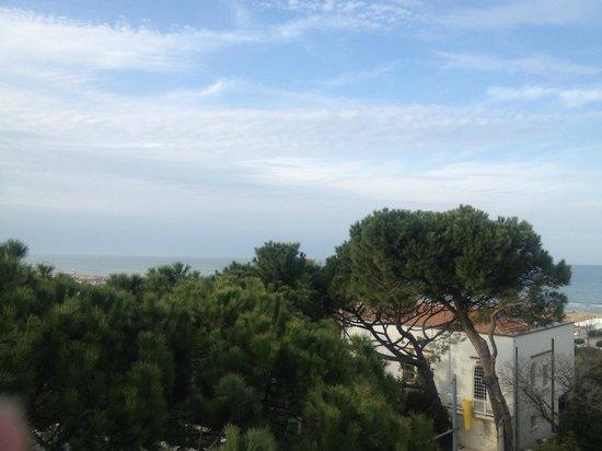 Hotel Belvedere: View