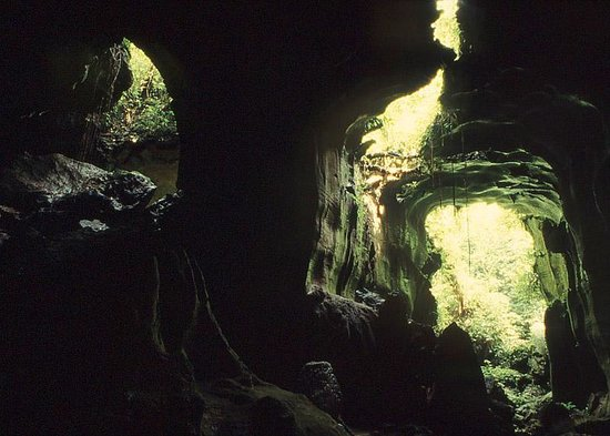 Bat Cave Bukit Lawang Indonesia Top Tips Before You Go