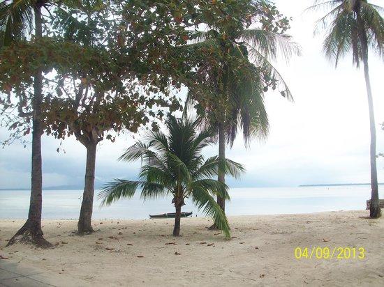 Dos Palmas Island Resort & Spa: seaside