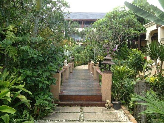 Samui Jasmine Resort: le jardin
