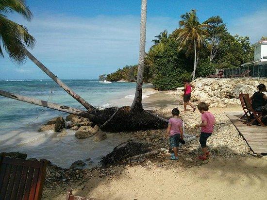 Coco Beach Resort: esapce plage à 5 mètres des chambres