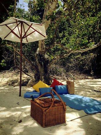 Gaya Island Resort: We had a picnic at Tavajun Bay