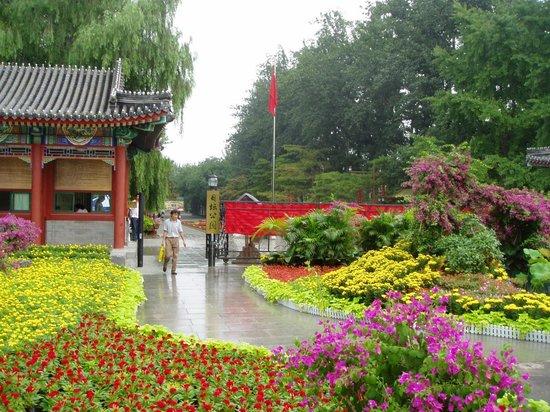 Tuanjiehu Park Photo