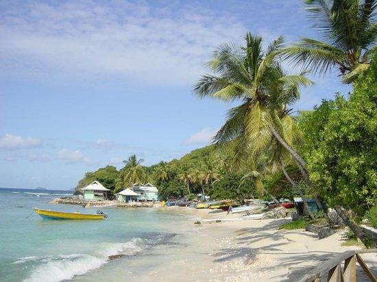 The Caribbean Islands St Vvincent