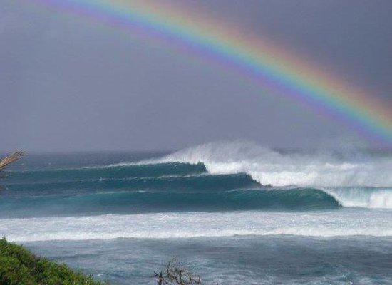 Foto de Dolphin Beach