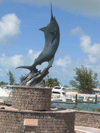 Chub Cay Foto