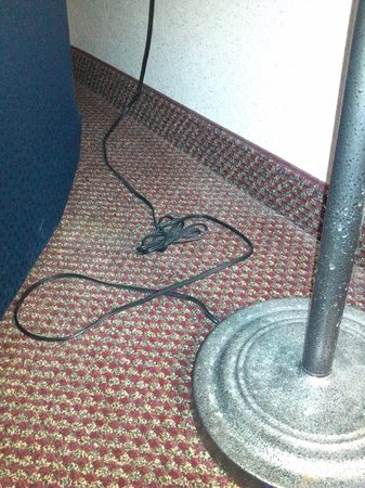 Baymont Inn & Suites Dowagiac: you can see the dirt lines where they have vacuumed around things instead of moving them