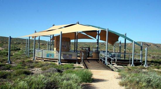 Jurabi Turtle Centre