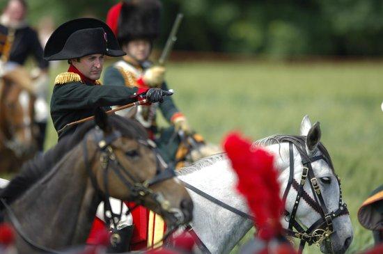 Ibis Brussels Waterloo : Battle of Waterloo