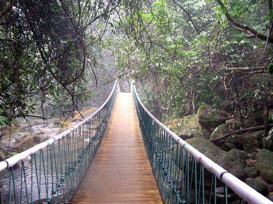 Bazhai Valley Foto