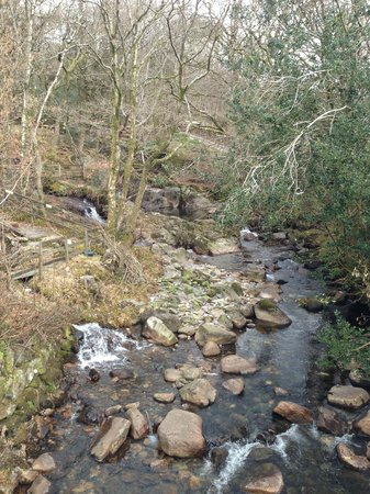 Ravenglass and Eskdale Railway: Mountain stream in Eskdale