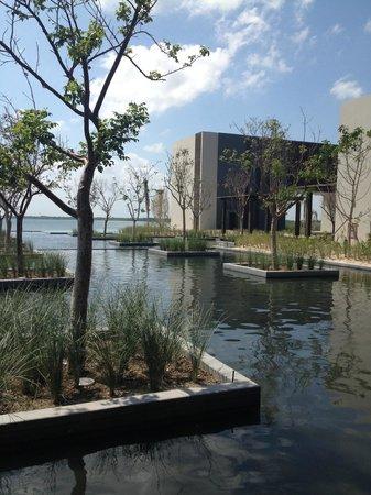 NIZUC Resort and Spa : grounds