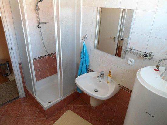 Karoly vendeghaz: One of the bathrooms
