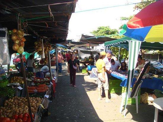 Farmers Fair (Ferias del Agricultor) Photo