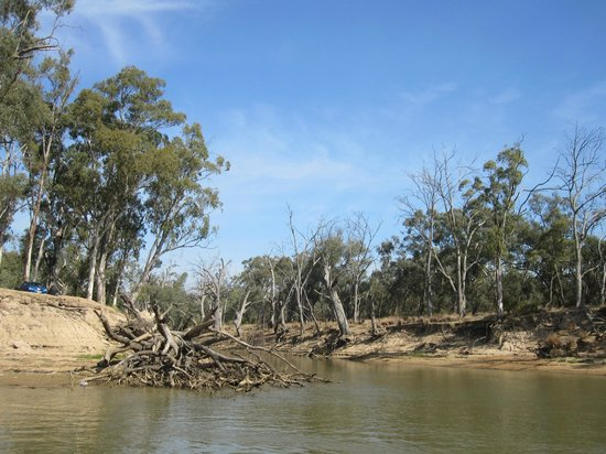 Murray River Paddlesteamers - PS Emmylou : The view of the river