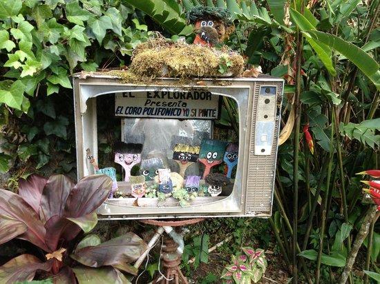 El Explorador Gardens: Junk not art