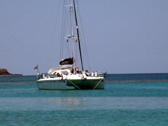 RadioFlyer Catamaran Charters Photo