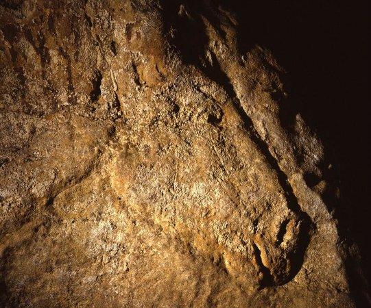 Les Eyzies de Tayac, France : Le Cheval de Commarque. Grotte ornée-14000 ans.