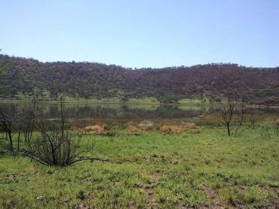 The Tswaing Meteor Crater: Tswaing Meteorite