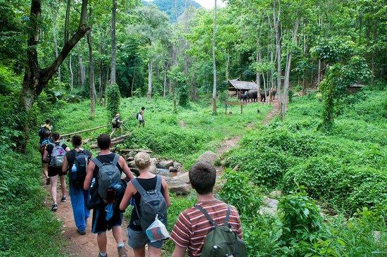 Chiang Mai Good Day Tour