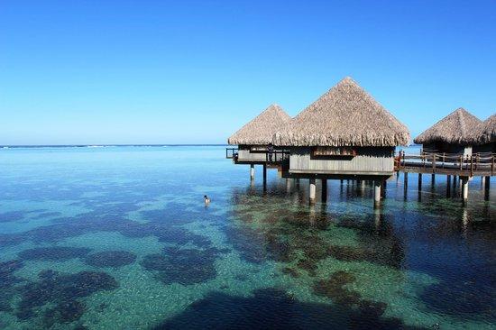 Le Meridien Tahiti: Overwater Bungalows
