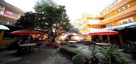 Buddha Garden Hotel: Garden