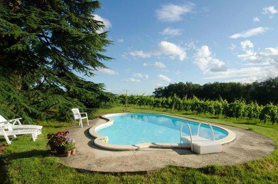Domaine de la Rogere: Lekker luieren bij het zwembad met uitzicht op de wijngaard!