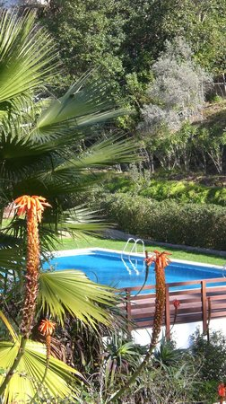 Villa Termal das Caldas de Monchique Spa & Resort: Swimming pool