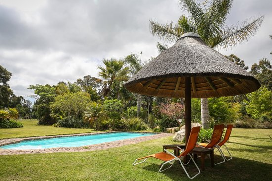 Coral Tree Cottages: Pool