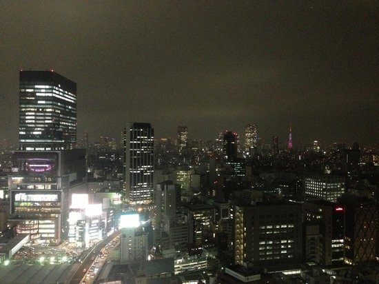 Cerulean Tower Tokyu Hotel: View from our room