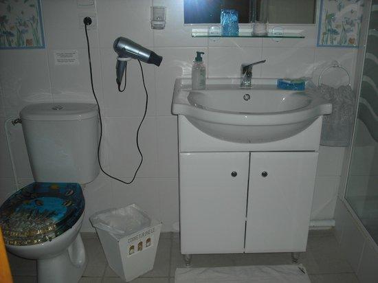 Au Temps des Cerises : salle de bain .. grande douche sur la droite