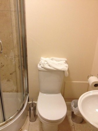 The Orchard Hotel Gloucester: toilet