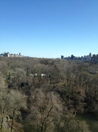 ‪‪The Ritz-Carlton New York, Central Park‬: View of Central Park from Park View room‬