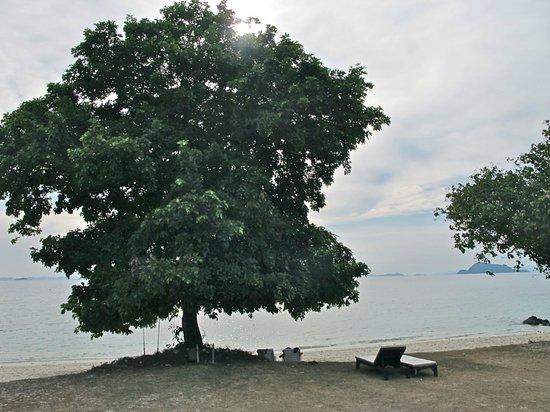 GLOW Elixir Koh Yao Yai: beach