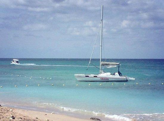 Shasa Catamaran Cruises: intimate catamaran